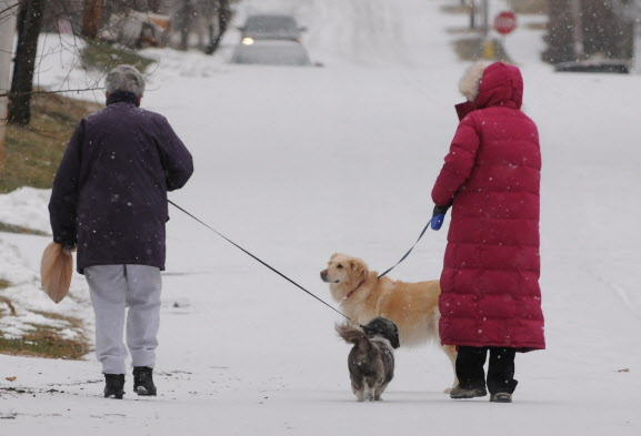 Two women walk dogs along Grove Street in Bangor as light snow starts to fall on Monday.