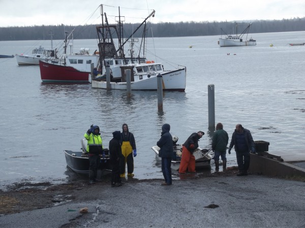 Fishermen and buyers of sea urchins gather at the water's edge at the public boat landing in Edmunds on Monday, the start of the late season for draggers in Denny's Bay.