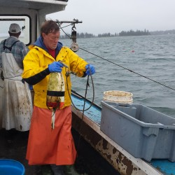 New cable show to start with feature on Maine lobstermen