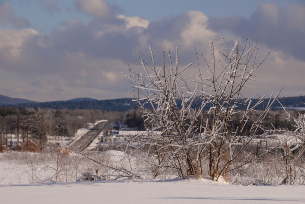 As light traffic moves on nearby Route 1A, ice encrusts bushes growing atop Whiting Hill in Brewer on New Year's Day.