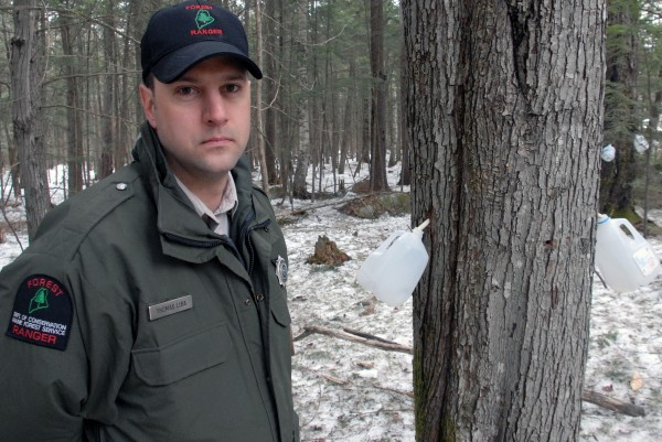 Maine Forest Ranger Thomas Liba stands in woods near an illegal maple syrup operation in the Katahdin region in March.