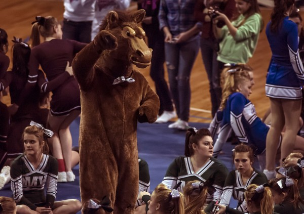 The Mount View Mustang rallies the crowd during a break in the Class B cheering competition at the Cross Insurance Center in Bangor on Saturday.
