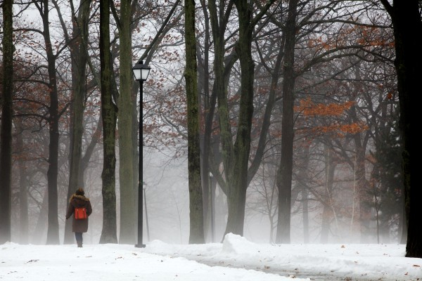 A woman makes her way carefully over an icy path in Portland's Deering Oaks Park Monday as the warm temperature and rain create fog.