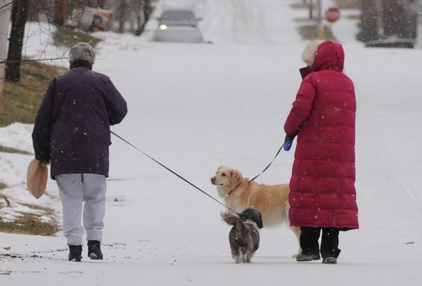 Two women walk dogs along Grove Street in Bangor as light snow starts to fall in this December 2013 file photo.