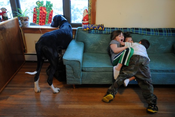 Six-year-old Landin tackles his sister Haven, 7, and cousin Chelsea, 20 months, after getting home from school. Their Great Dane Gustavo watches out the window for the other children coming home.