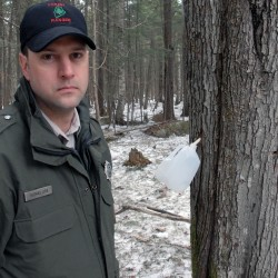 Forest rangers undeterred by LePage veto of bill that would have armed them