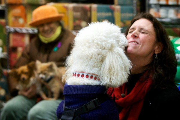 A poodle makes direct contact with pet communicator Sara Moore at Planet Dog in Portland on Thursday night. Proceeds from the event went to the nonprofit Planet Dog Foundation.