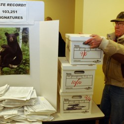 Signature-gathering tactics under fire in bear referendum