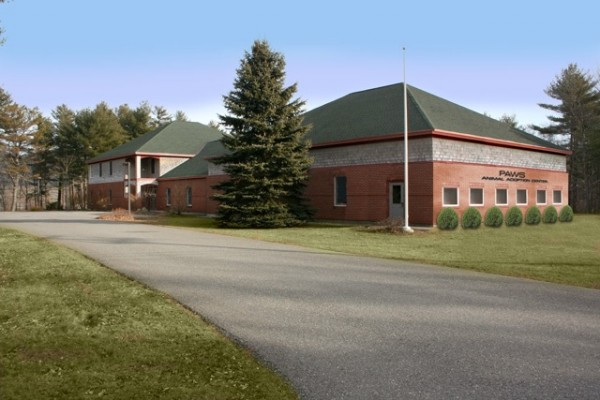Mock-up of the new home for P.A.W.S. Animal Adoption Center.