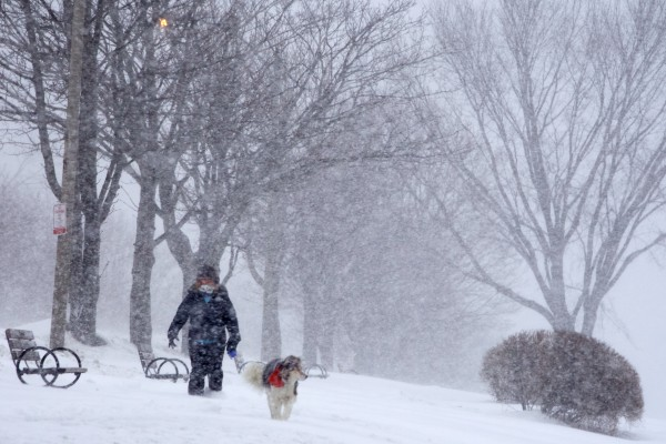 A woman walks a dog on Portland's Eastern Prom during Thursday's snowstorm.