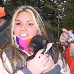 Unity College students research bear population, record data for DIF&W