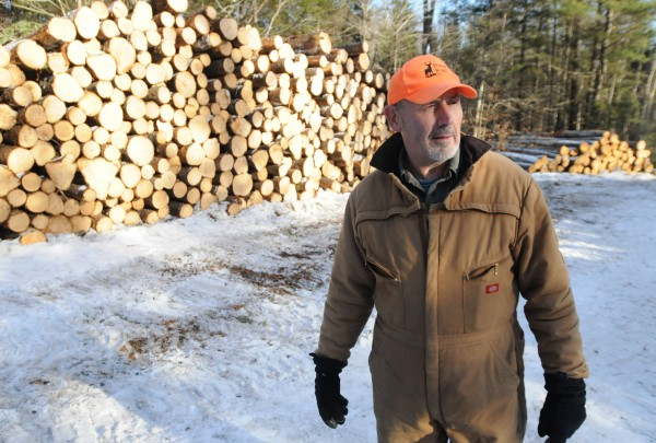 Jerry Perkins owns the wood lot off Perkins Point Road where logger Dustin Young sought shelter from stray bullets recently.