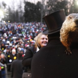 Famous groundhog Punxsutawney Phil predicts more winter