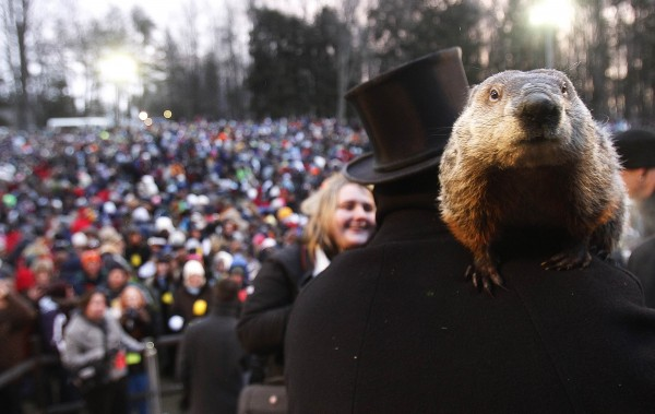 In this February 2013 file photo, groundhog co-handler Ron Ploucha holds Punxsutawney Phil in front of a record crowd estimated at 35,000 after Phil's annual weather prediction on Gobbler's Knob in Punxsutawney, Pa.