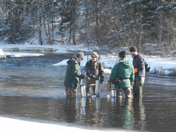 Paul Christman (from left), Colby Bruchs and Ernie Atkinson, fisheries biologists with the state Department of Marine Resources, and Kyle Winslow of the Downeast Salmon Federation plant salmon eggs into the Pleasant River in Columbia Falls earlier this month.