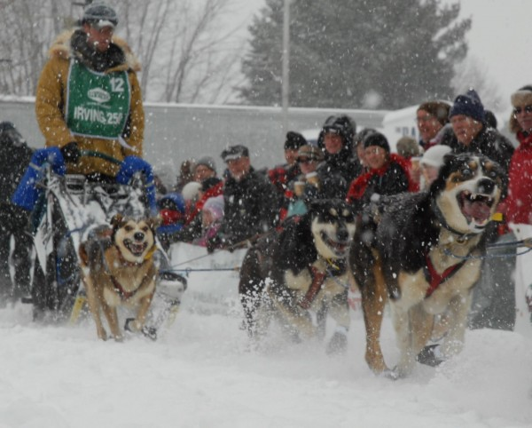 Ryan Anderson takes off at the start of the 2013 Can Am Crown 250-mile sled dog race in this March 2013 file photo. A 2012 and 2013 winner, he is a favorite to win this year when the Can Am begins March 1 in Fort Kent.