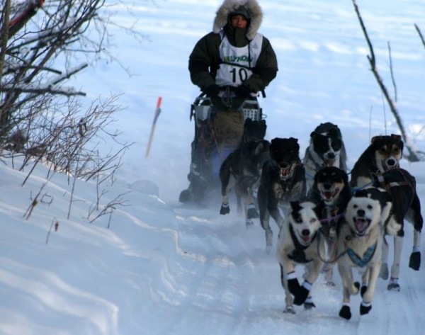 Can Am 250 musher Bailey Vitello on a training run with his dogs. At 16 years old, he is the youngest musher to attempt the annual event.
