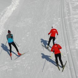 Two U.S. experts say competition in Presque Isle shows how far biathlon has come