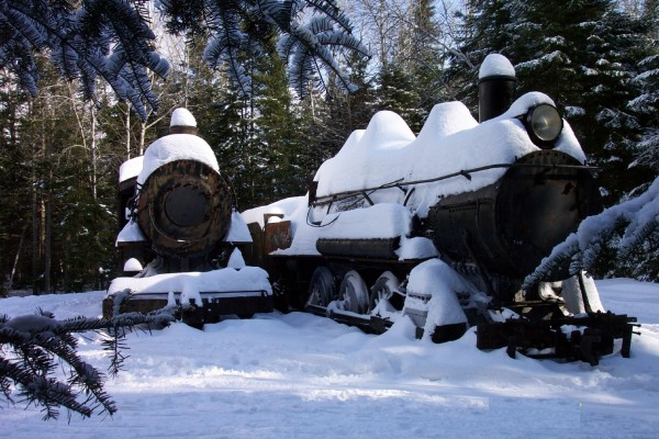 Old locomotives sit abandoned in the middle of Maine