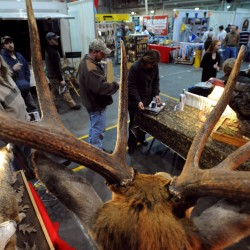 Outdoors show draws the winter-weary