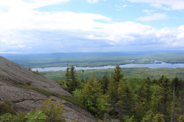 Eagle Rock, a bald outcropping on the northwest end of Big Moose Mountain, in June.