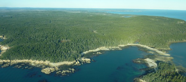 Lyme Timber purchased approximately 3,200 acres of forestland on the Schoodic Peninsula in 2011