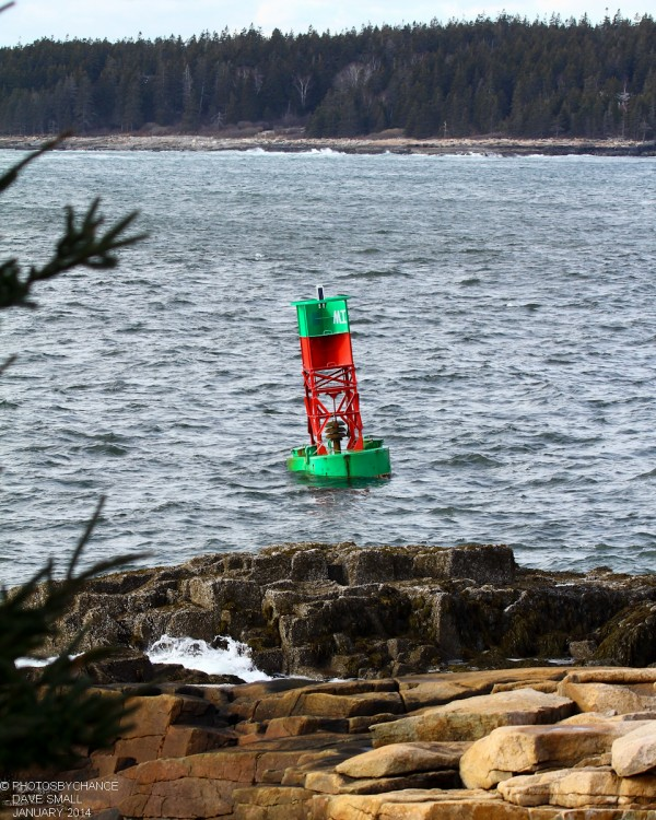A bell buoy washes ashore at Schoodic