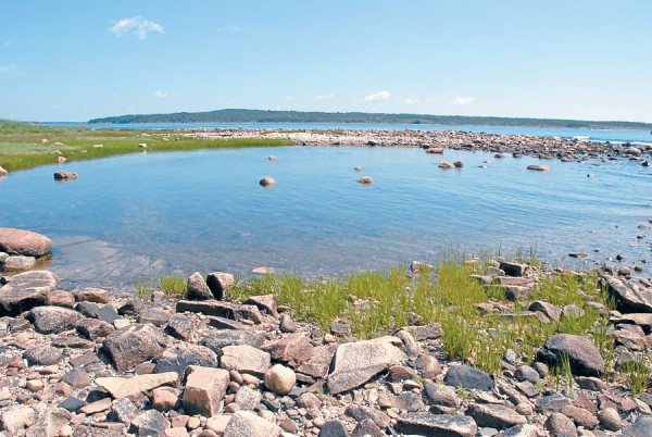 "The incoming tide floods a pool along Petit Manan Point in western Washington County; offshore, Pigeon Hill Bay separates the mainland from distant Bois Bubert Island. Petit Manan Point lies in Steuben, a town that out-of-state visitors often pronounce as &quotShtoy-ben."" True Mainers know that the correct pronunciation is ""Stew-ben."""