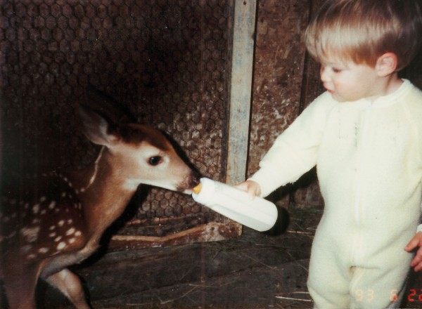 The grandson of Sandra Stone, a licensed wildlife rehabber for Maine, feeds a baby white-tailed deer that's being rehabilitated at Stone's home in Frankfort.