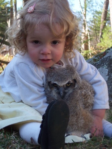 Isabella Farrington, daughter of licensed wildlife rehabber Adam Farrington, holds a great horned owl in 2006 at the Maine Wildlife Park in Gray. The owl is imprinted on people, so it is considered unreleasable and lives at the park.