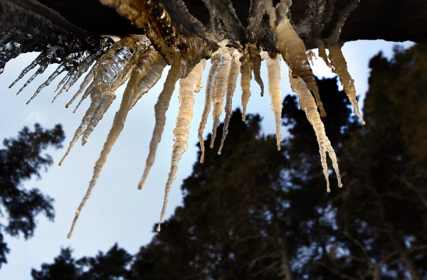 Minerals and other substances add earth-toned colors to icicles along the rocky coast at Acadia National Park in Maine.