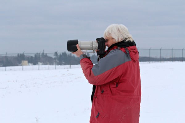 Sharon Fiedler, a wildlife photographer from Bangor, photographs a snowy owl perching on the fence surrounding the Bangor International Airport in February 2014.
