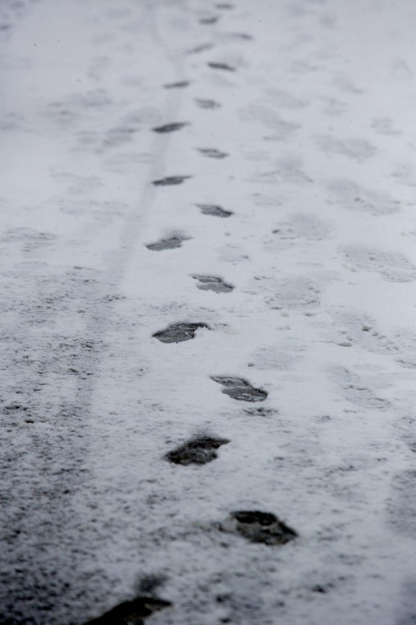 Footprints are visible in a thin layer of snow on State Street during the start of a late winter storm that began Wednesday and is expected to bring as much as 2 feet of snow to parts of Maine, according to the National Weather Service.