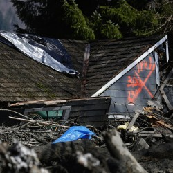 Landslide kills three, injures others in Washington state