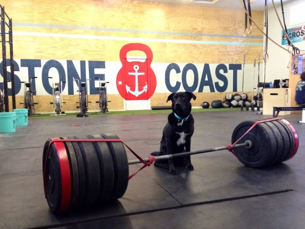 Beacon of Stone Coast Crossfit
