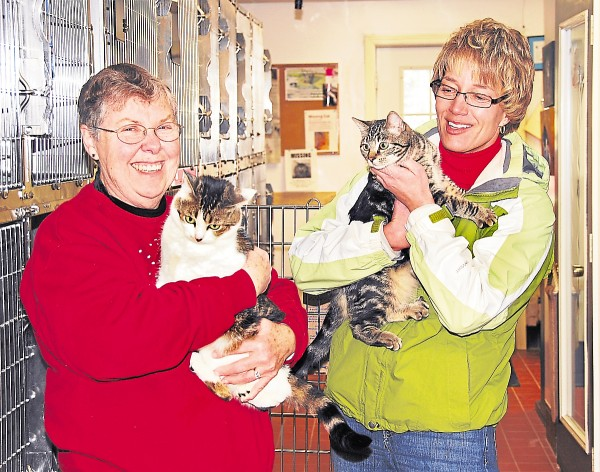 Board member Roberta Fowler (left) holds Tori, and Board President Lori Smart holds Ricki at The Animal Orphanage in Old Town recently.