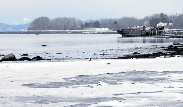 The outgoing Penobscot River tide leaves the Morse Cove shore in Castine covered in snow and ice in late February. Visible at left on the northern horizon are the Prospect tower of the Penobscot Narrows Bridge and a steam plume from the Verso Paper mill in Bucksport.