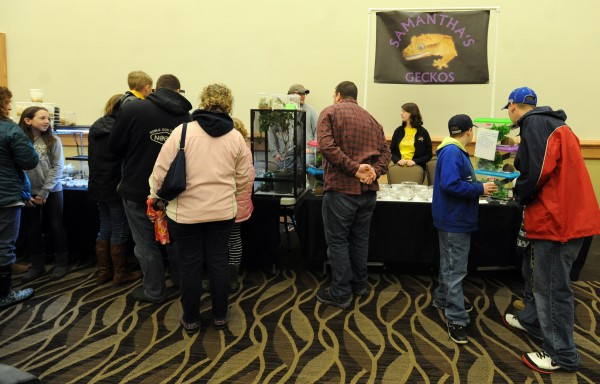 Enthusiasts check out the exhibits at the Northeast Reptile Expo Sunday at the Cross Insurance Center.
