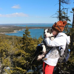 Birds abound on Acadia hike