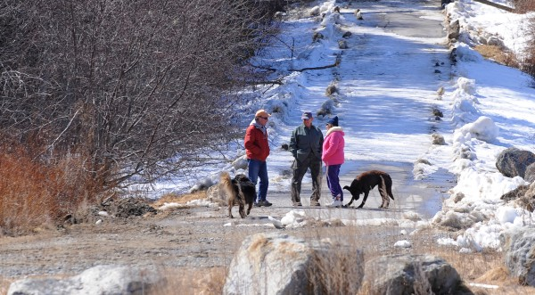 Steve Henkel (from left), Dave Zurek and his wife, Kathryn Zurek, accompanied by their dogs, enjoy the mild weather at Sandy Point in Stockton Springs on Friday afternoon. The weather is finally showing signs of spring in the region and more people are spending time outside.