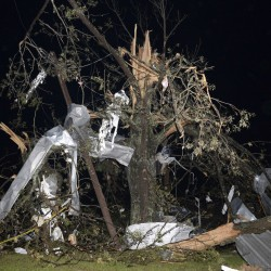 Storms kill 72 across South; pummel Alabama