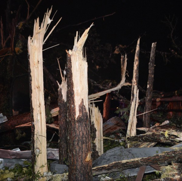 Damaged trees are seen after a tornado hit the town of Mayflower, Arkansas around 7:30 p.m., April 27, 2014. Tornadoes ripped through the south-central United States on Sunday, killing at least 17 people in Arkansas and Oklahoma and wiping out entire neighborhoods of homes, according to officials.
