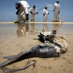 Gulf residents to get extra $64M for spill claims