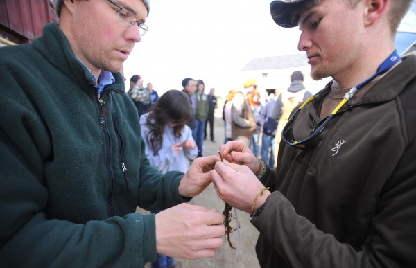 Ryan Parker (left) explains to Brewer High School senior Josh Lugdon the proper way to to graft apple trees at the Parker Family Farm in Newport on Thursday. Lugdon was one of thirty students who came to visit as part of their environmental issues class to see a small farm that uses sustainable agricultural methods.