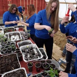 Students learn useful skills by tending orchards, gardens