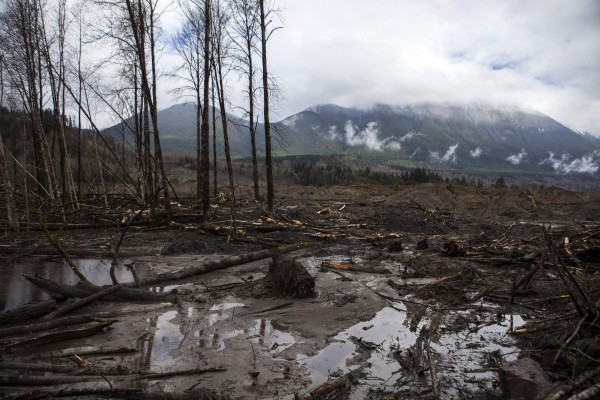 A view is seen of the large debris pile left by a mudslide in Oso, Wash, on Friday.