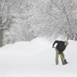 January cold, snow in reach of records, experts say