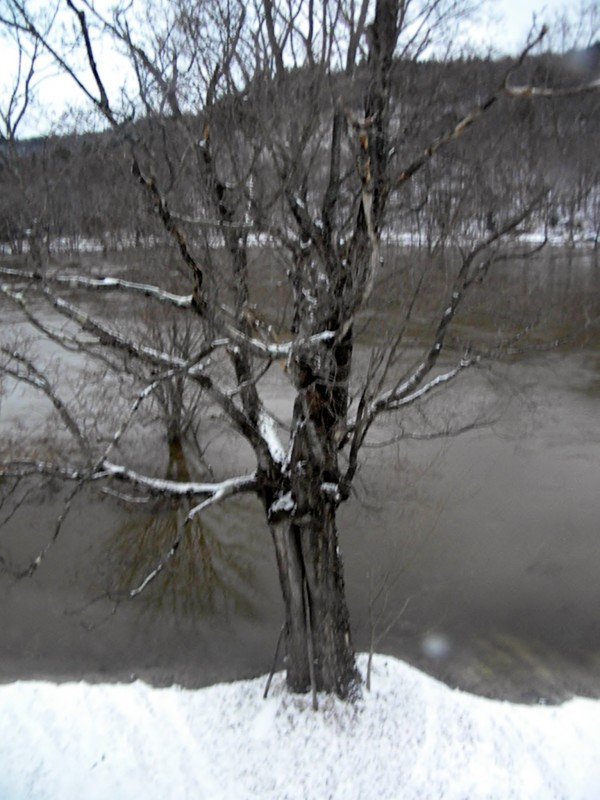 The Androscoggin River had exceeded its banks Monday morning around 7:30 a.m. in South Rumford, Maine.