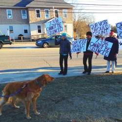Residents bark at Scarborough officials over proposed rules for dogs on beaches