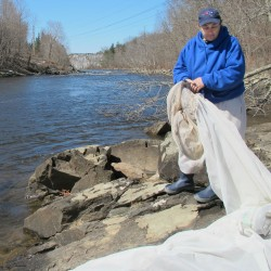 Lawmakers sink bid to exempt tribal fishermen from elver quotas